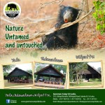 Nature-Untamed-and-untouched